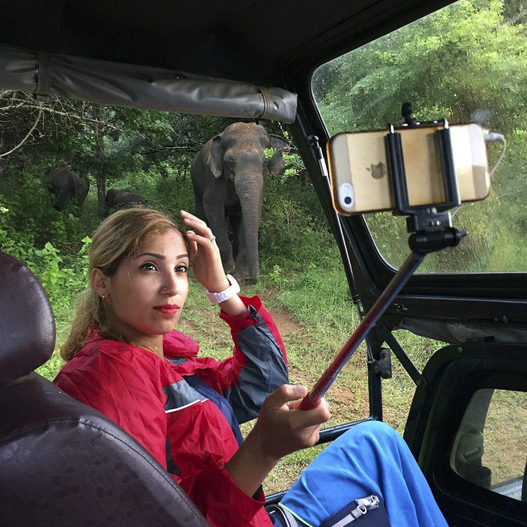 Eine Touristin macht im Yala-Nationalpark in Sri Lanka aus dem Jeep heraus ein Selfie mit einer Elefantenkuh und ihrem Kalb, 7. Januar 2016. Foto: Mathias Schumacher