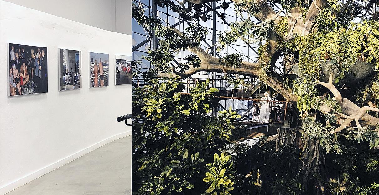 Garden of Delight von Nick Hannes beim Festival Image Singulières 2019 in Sete, Foto: Mathias Schumacher